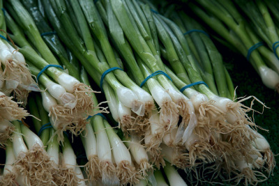 Green Onions by Redzenradish on Flickr.