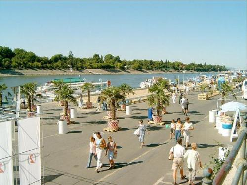 Buda(Pest) Beach   Up to know Budapest was called just the Paris of East, maybe from now, we can be Florida of East as well.  For some years in August a section of the Pestside's riverbank is covered by sand, and from one day to the other palmtrees spring forth from the pavement of the quay. One can walk from his tenement-house appartement standing  on the other sideof the  road in a swimming suit, sunglass and slippery, throwing a towel on his shoulder, while people travelling on the passing-by trolleys just fetch a sigh! This year – being the temperature of the city is over 35 C for more, than a week, even the climate helps you to feel on a caribbean beach.