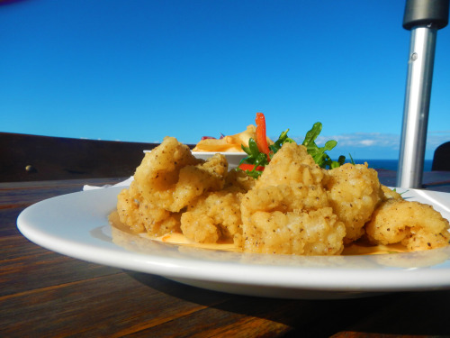 Salt and Pepper Squid on the Ocean