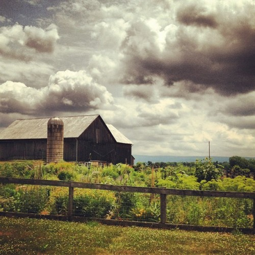 #sweet #barn (Taken with Instagram at Tom Tudek Memorial Park)