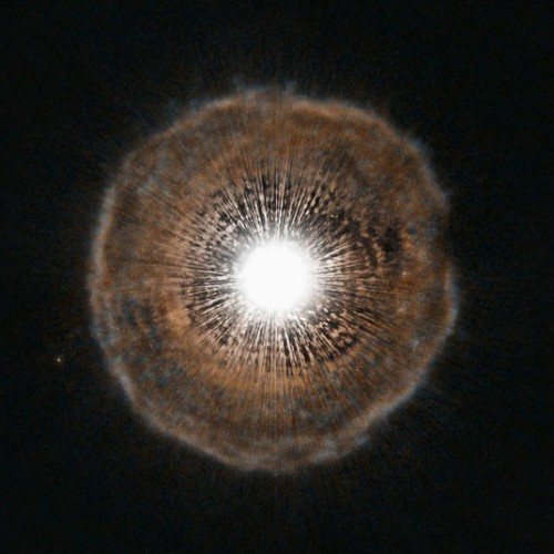inothernews:  THE END   This Hubble Space Telescope image shows U Camelopardalis, a star nearing the end of its life located in the constellation of Camelopardalis (The Giraffe), near the North Celestial Pole. As it begins to run low on fuel, it is becoming unstable. Every few thousand years, it coughs out a nearly spherical shell of gas as a layer of helium around its core begins to fuse.  (Photo: ESA / NASA via The Telegraph)