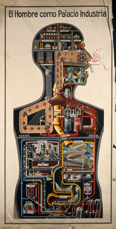 El hombre como palacio industrial (Man as Industrial Palace), Fritz Kahn