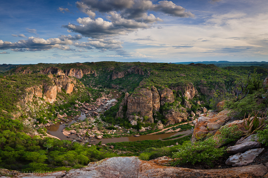 Lanner Gorge in the Pafuri region in Kruger National Park, South Africa Photo by Mark Dumbleton