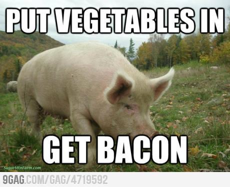 Put vegetables in, get bacon 9gag:  Nature's Greatest Machine