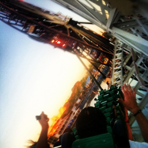 California Screamin' at Disney California Adventure (instagram = drostacks)