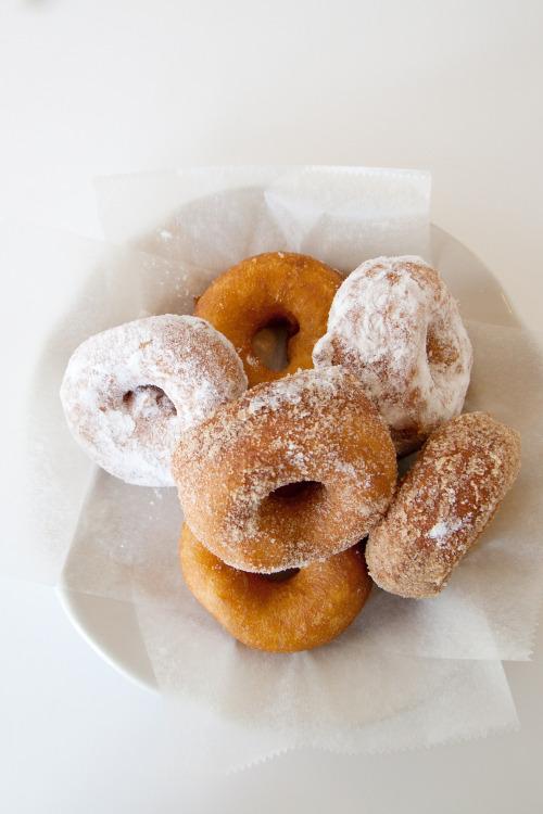 coconut-river:  cadeux:  modern-avenue:  ✩fʀεsh ϻσδεʀησʀgαηɪςβlσg✩  donut  promoting all new followers to 30,000+