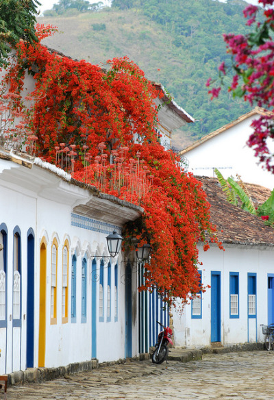 visitheworld:  Flowers on the streets of Paraty, Costa Verde, Brazil (by Márcia Valle).