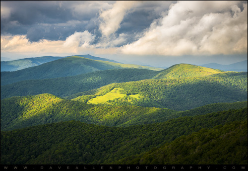 thisisappalachia:  Shadows & Light - Roan Mountain Highlands (by Dave Allen Photography)