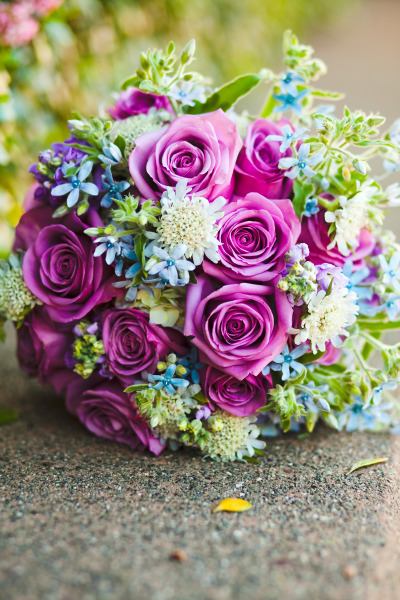 simplyseattleweddings:  Beautiful purple rose bouquet. Love the tiny light blue flowers! Check out the rest of the wedding here.