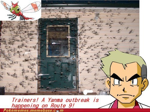 Its a outbreak! Grab your pokeballs!