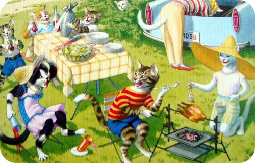 Kitty cat picnic…