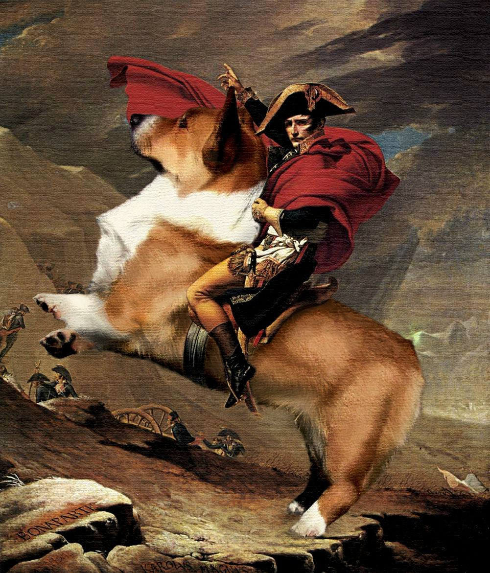 Napoleon's noble steed.