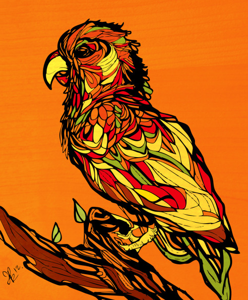 Tropical Bird.2012