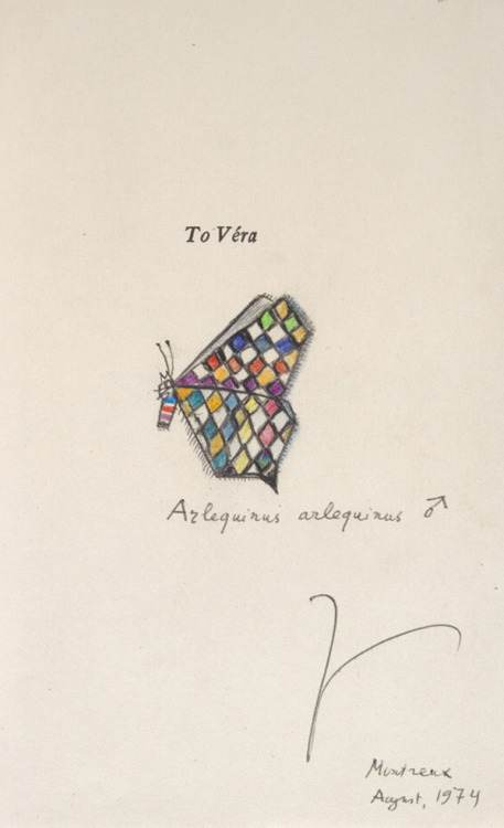 A butterfly illustration by Nabokov dedicated his wife and muse, Véra.