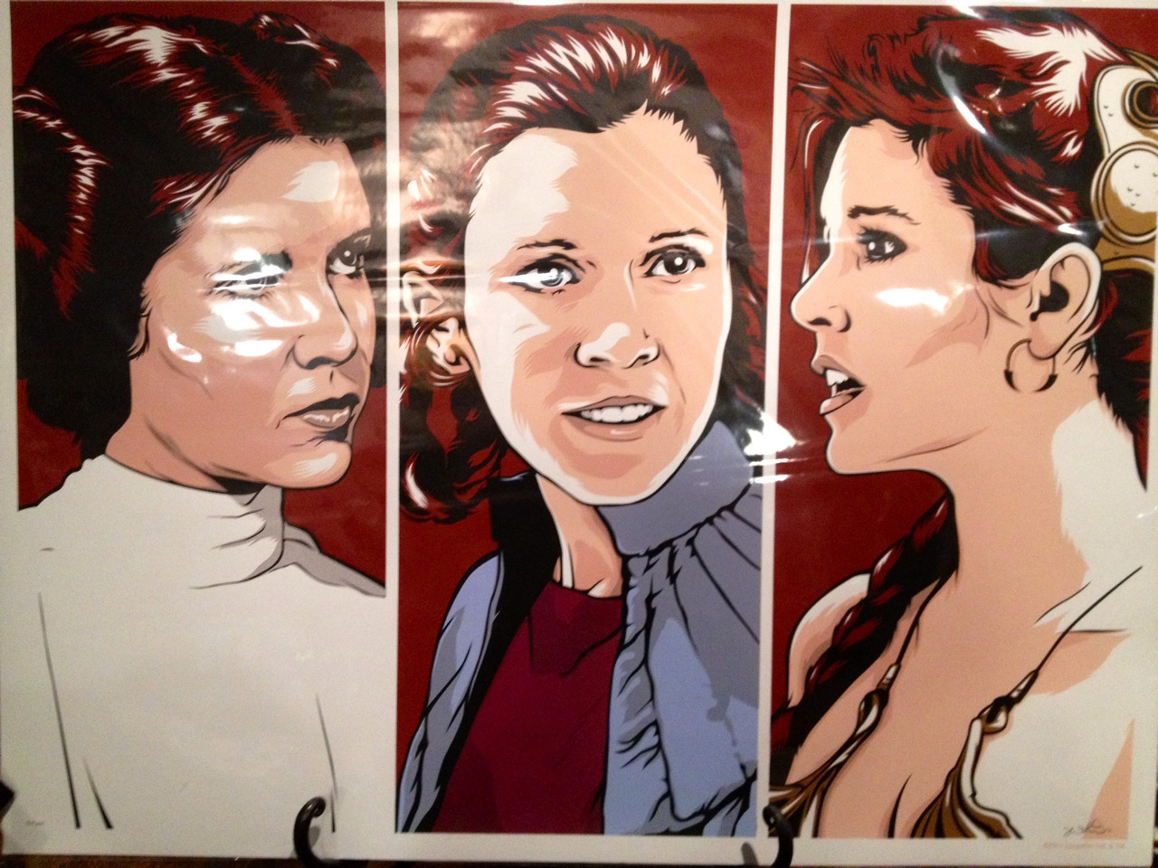 The faces of Princess Leia.