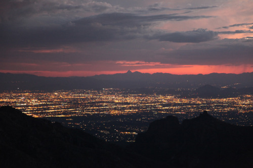 lolephant:  Tucson, AZ at sunset from a huge mountain. I fucking love this city…