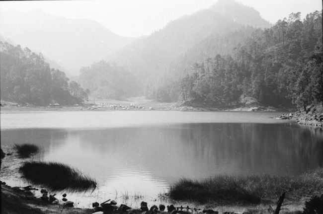 Camera: Kodak Retina Film: Kodak Plus X-Pan 125 Caption: Old film back from the 60's taken by my dad.