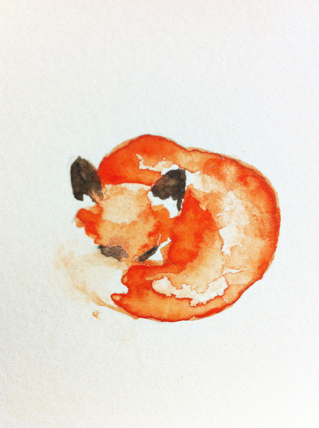 knowinng:  Watercolor fox by Carrie Booth