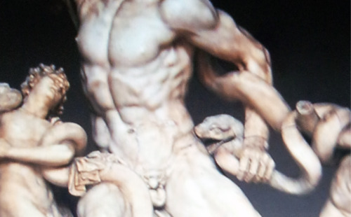 Laocoön and His Sons (detail)