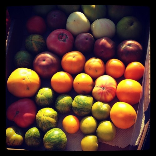 Heirloom tomatoes. (Taken with Instagram)