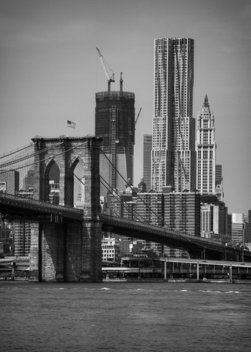 lmaguran:  New York - Freedom Tower Rising (by Matt Pasant)