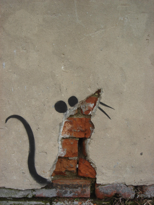 • What's left of Banky's rat in New Orleans, Louisiana