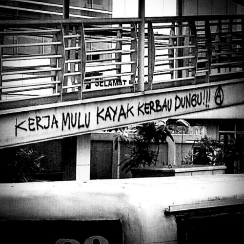 Kerja! Kerja! Kerja! #punk #sign #somewhere on Trans #Jakarta #busway #bridge #Indonesia #instanusantara #webstagram #picoftheday #photooftheday #antisocial (Taken with Instagram)