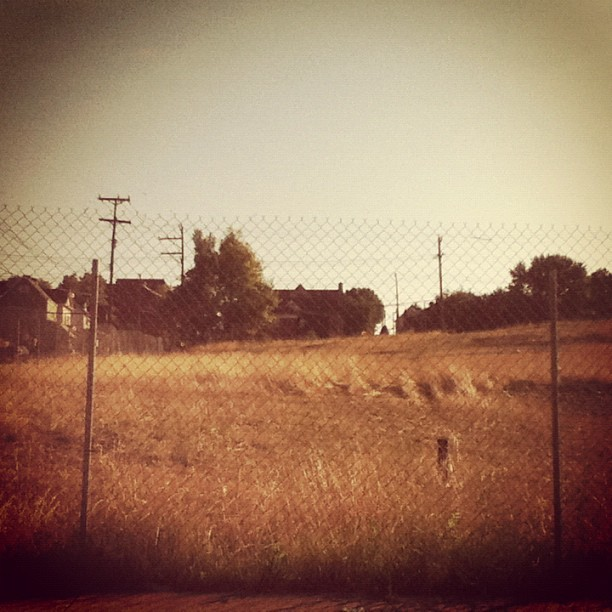 The prairie in Braddock. (Taken with Instagram)