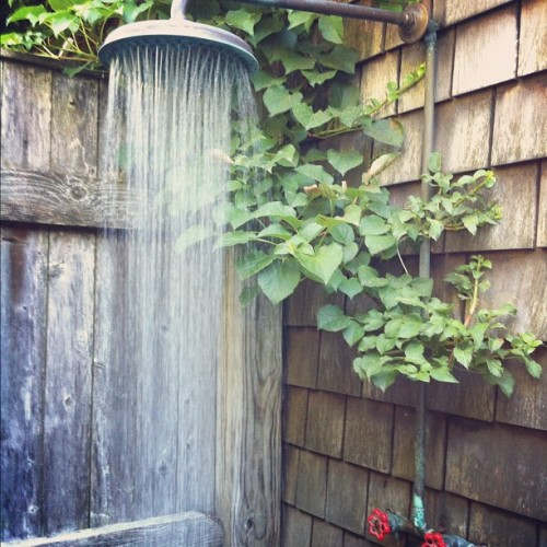 z-esti:  i want an outdoor shower