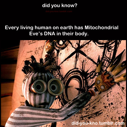 did-you-kno:  Mitochondrial Eve refers to the matrilineal most recent common ancestor (MRCA) of modern humans. Source