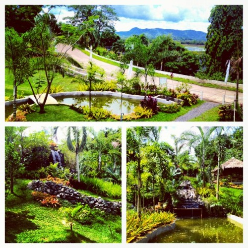 Talon park #philippines #outdoors #nature  (Taken with Instagram)