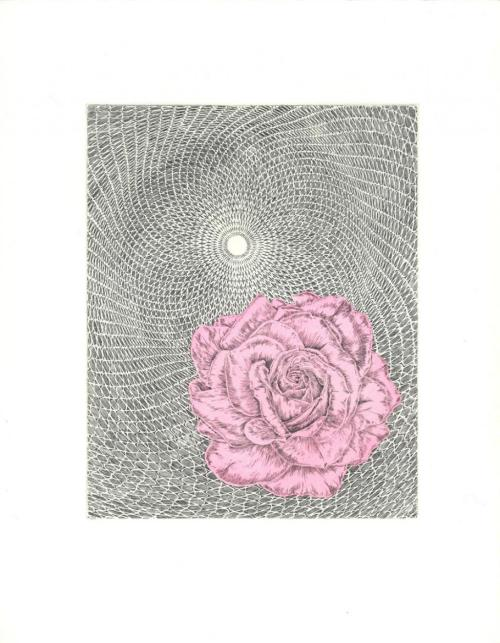 Untitled (Rose/Cycloid) by Butt Johnson