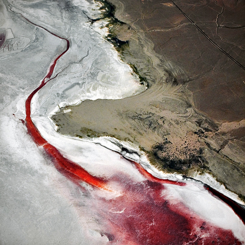travelingcolors:  Above the California Desert (by Brad Gillette)  The salt crust is colored red by dense colonies of halophilic archaebacteria.