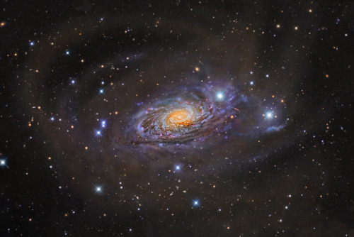 M63: The Sunflower Galaxy