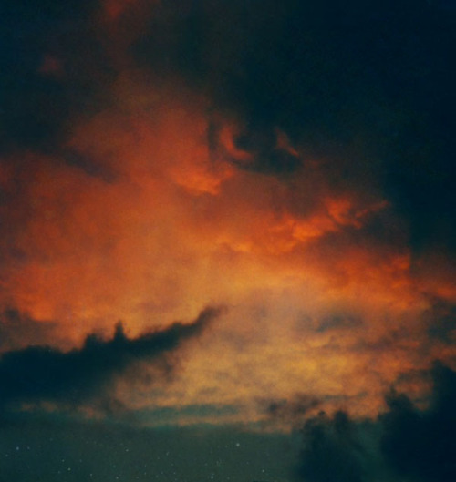 archenland:  (by Lauren Treece)