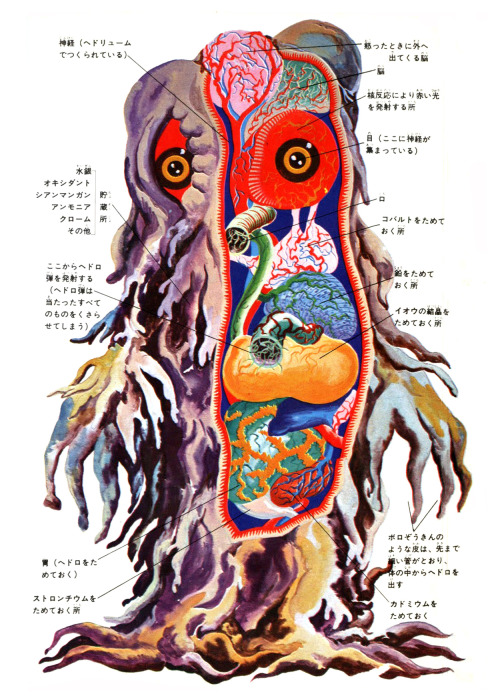 coldraresteaksandwich:  Hedorah anatomy