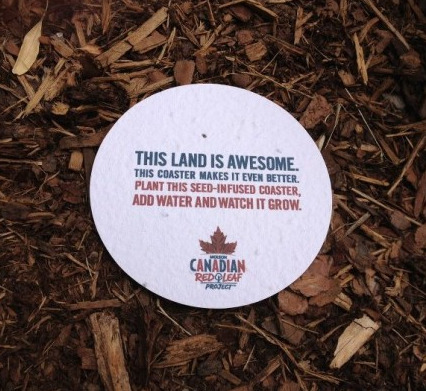 "Oh, Canada! nybg:  Molson Releases Beer Coasters that Grow into Trees All right, chalk this one up to creative advertising at its best. I'm as much of a cynic as any when it comes to clever marketing ploys, but being able to totter into my back yard and plant my beer coaster at the end of the night is admittedly a pretty cool idea. As part of Molson's ""Red Leaf Project,"" the beer company is urging its fellow Canadians to get involved with restoring the country's green spaces, distributing biodegradable coasters seeded with…well, seeds. Black Spruce seeds, specifically. Just plant them in a place legal to do so, and wait several years to see the fruits of your besotted labors. Sadly, most Americans will miss out on this one, even if they do manage to get their hands on a Canadian seed coaster. Northern New York is about as far south as these trees will grow. But wherever you end up trying this, be sure you're not mistakenly picked up for littering with lager on your breath. I don't know that any police officer's going to believe you're actually planting trees. —MN"
