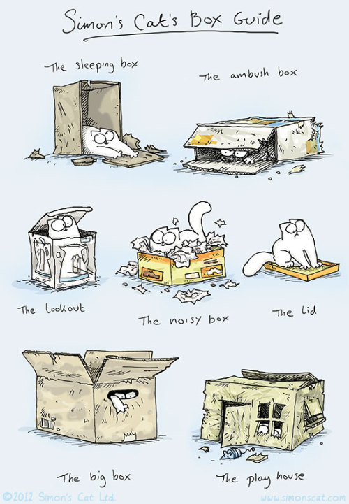 cybergata:  Shamelessly ripped off of Simon's Cat Website. The lookout is part of the kitteh fort.