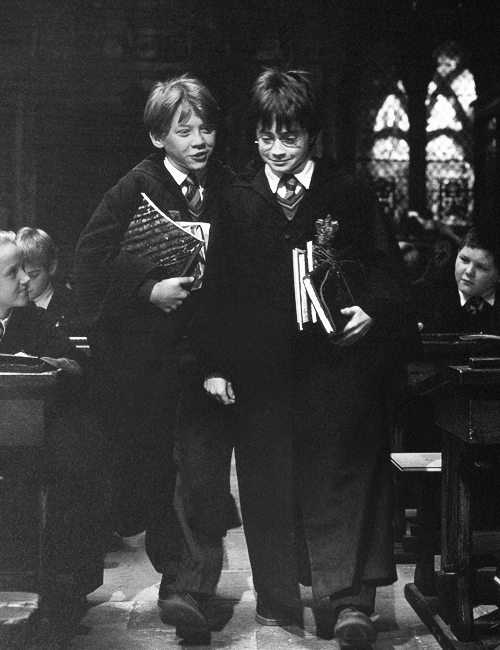 Rupert Grint and Daniel Radcliffe, Harry Potter and the Philosopher's Stone