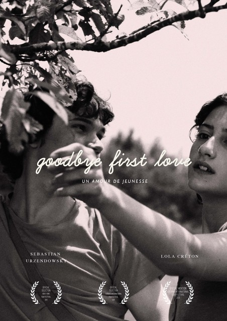 """Goodbye First Love"" (2011)"