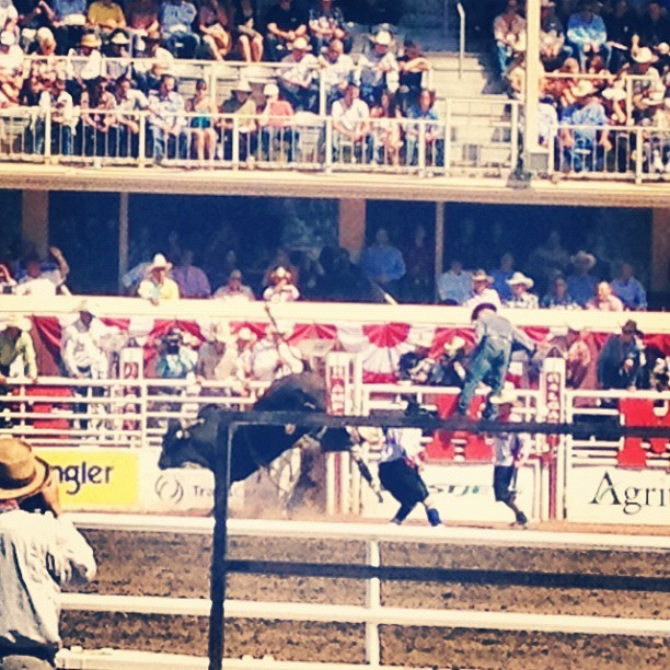 Giddy Up, Bull Riding #rodeo #calgary #stampede #yyc #calgarystampede #cowboys (Taken with Instagram at Stampede Grandstand)