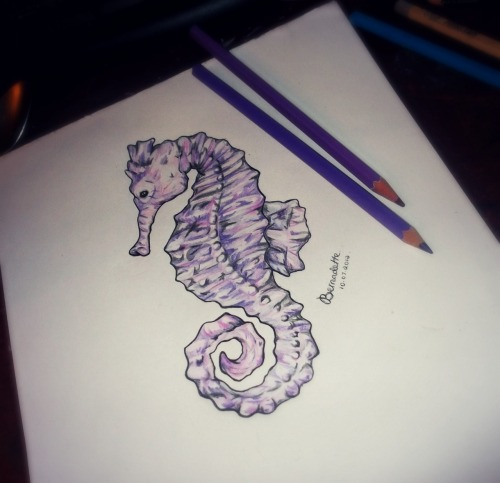 Day Four - Sea Creature, seahorse.