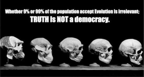 "atheist-overdose:  Truth is not a democracy  Exactly. And that is why we have a huge problem in the ""understanding"" department here in America. You don't get to say whether or not you believe in evolution. Evolution is a scientific fact and you don't get to have a say in whether or not it's true. Just like you don't get to have a say in whether or not we breathe oxygen or whether or not the moon exists. These things are just facts and require ZERO belief in order to be true.  I hate that the question is even asked anymore, ""Do you believe in evolution?"" It isn't a valid question. The question should be rephrased as, ""Do you accept the truth that evolution is a provable scientific fact regardless of the religious beliefs of some groups?"""