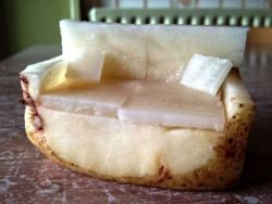 absolutelymadness:  Couch potato
