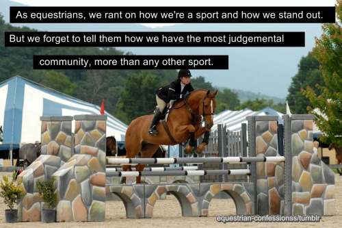 equestrian-confessionss:  Submitted by (-ithoroughbred) (Source)