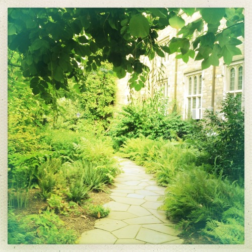 In the garden outside the Cathedral College. Jimmy Lens, Ina's 1982 Film, No Flash, Taken with Hipstamatic
