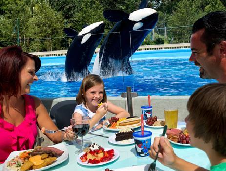 SeaWorld Orlando's Dine With Shamu dining experience reopened on July 9, 2012.
