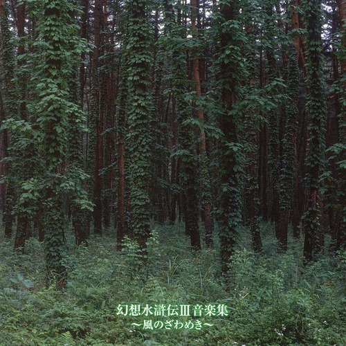 bosque aroma - Rustling of the Wind