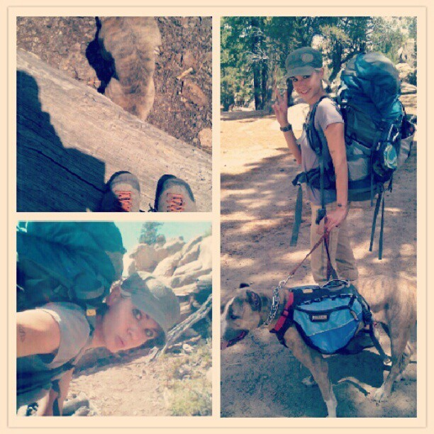 Pack mule buddies. #Rockclimbing #bigbear (Taken with Instagram at Big Bear City)