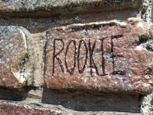 a-tablespoon-of-hemlock:  Rookie will forever live on the sparkly façade of Voodoo Doughnuts.